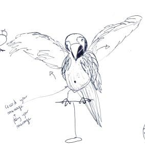 Parrot copie
