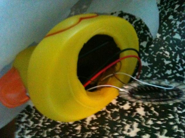 duck sensor wiring